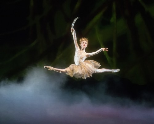 Miami City Ballet A Midsummer's Night Dream