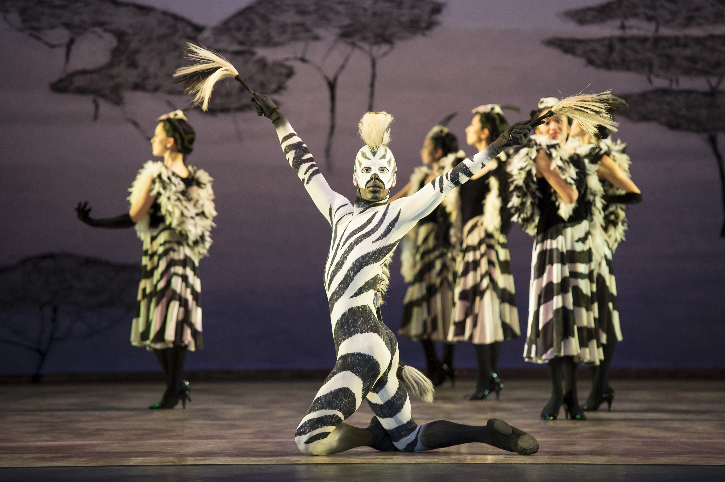 'Still Life' at the Penguin Café; Birmingham Royal Ballet
